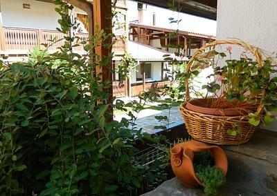 Къща за гости Орешака